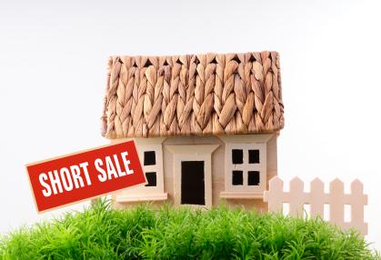 model-house.jpg